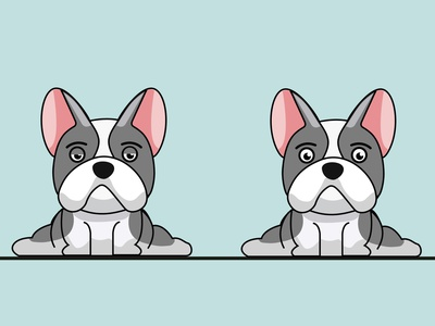 Bulldog character design illustration