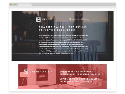 Efydis wordpress ecommerce store webdesign charte logo branding