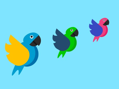 Parrots colorful bird illustration illustration flatdesign bird parrot logo parrots parrot