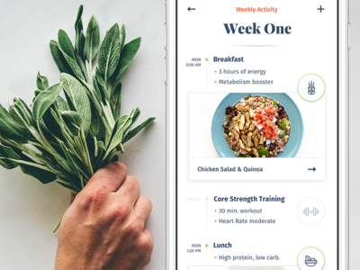 Ēvolve – Health Made Simple (concepts) pota journal timeline serif evolve ui ux fitness health recipe