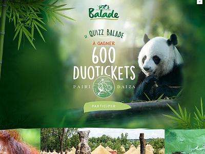 Balade Concours pairidaiza boter belgian panda contest