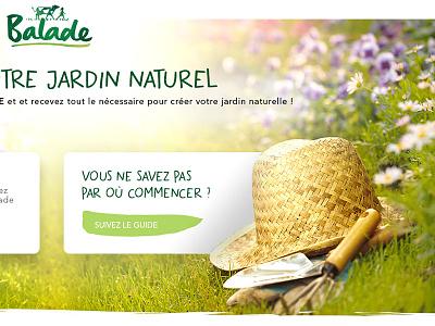 Natural garden flowers green nature boter