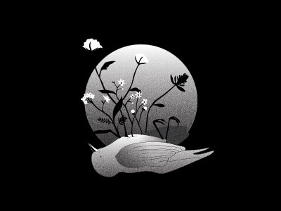 Death memento mori black and white grain bird flowers floral death illo illustrator vector illustration