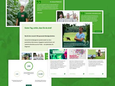 Öko Einblick web responsive design images online website webdesign interface design