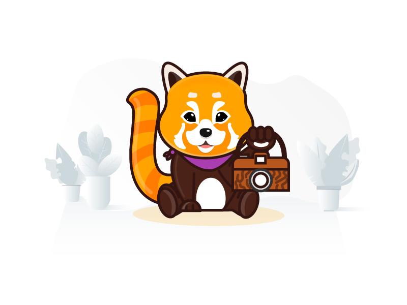 Redpanda Mascot Design redpanda panda branding character caricature illustration mascot
