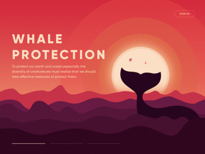 WhaleProtection