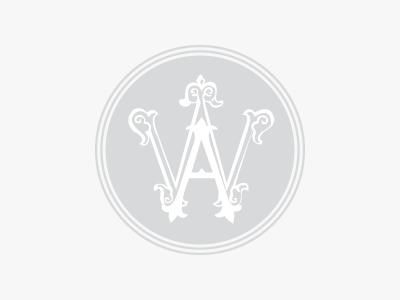 Logo alisa weiss o1