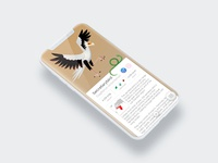To the Zoo - Illustrated UI - Secretarybird