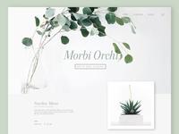 e-shop plants template