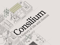 Consilium - A history of life and choices