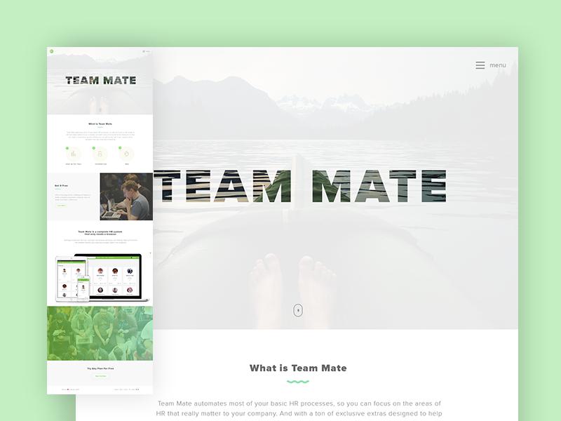 Team mate
