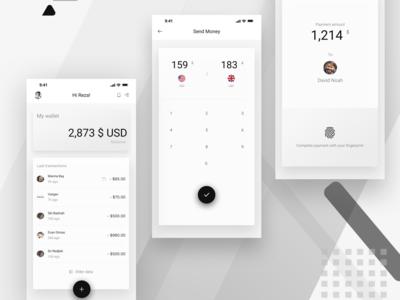 Banking app concept [fintech]
