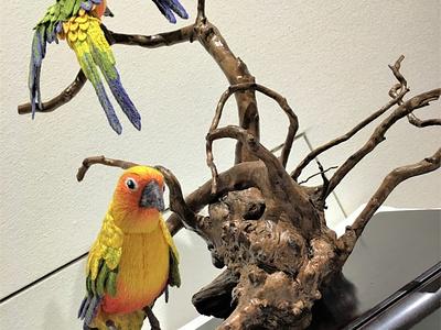 Sun Parakeets embroidery sayoko