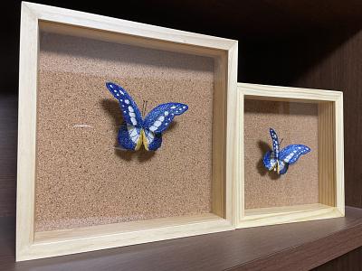 Morpho Rhetenor Helena Butterfly sayoko brooch butterfly embroidery