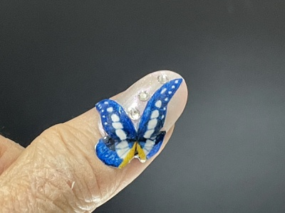 Morpho Rhetenor Helena accessories 付け爪 brooch butterfly embroidery