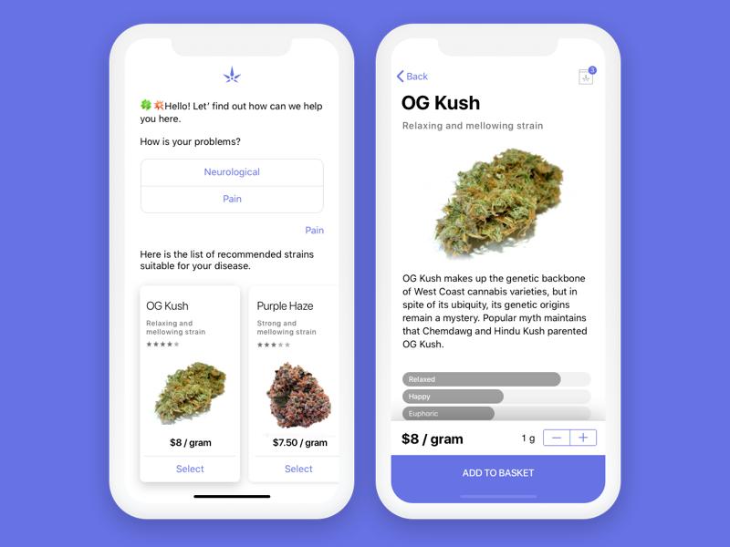 Highfive Concept chatbot bot design ui iphone iphone x 11 ios app marijuana medijuana weed