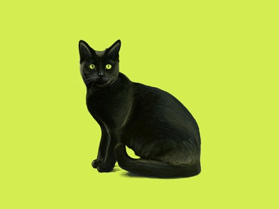 Cat sketch realistic drawing yellow black cat pet drawing illustration digital painting
