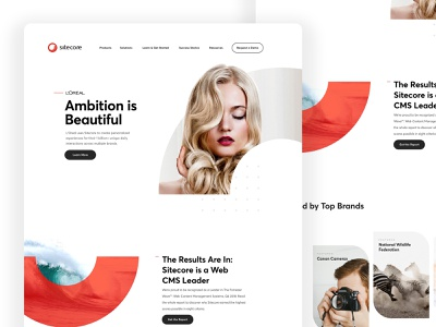 Sitecore Alternate Direction ux web interaction ui anml brand refresh branding concept branding sitecore