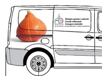 Organic Van