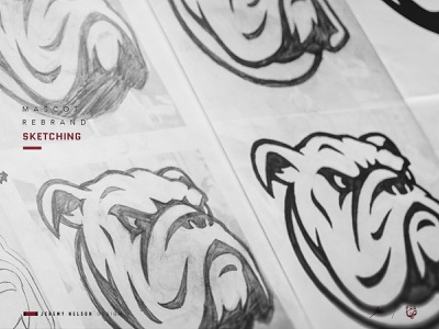 Dean College Bulldogs | Concept Development & Sketches basketball football bulldog mascot logo athletics icon illustration mascot logo identity sports logo sports design branding