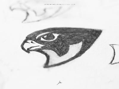 North Ridge Falcons     Sketching + Inspiration esports bird sport branding eagle falcons falcon sport mascot logo sports mascot design illustration logo sports logo identity sports design branding
