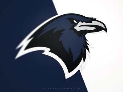 Houston Ravens   Identity System nhl football vector ravens mascot logo bird illustration animal logo raven logo raven bird icon design mascot illustration esports logo identity sports logo sports design branding