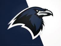 Houston Ravens   Identity System