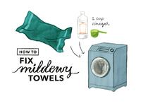 Thumbtack Blog - Mildewy Towels
