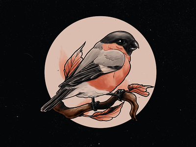 Bullfinch leaves bird drawing tattoo neotraditional procreate illustration bullfinch