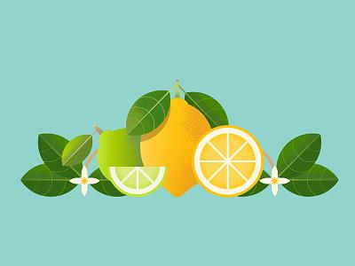 Lemons flower lime plant fruit citrus lemon