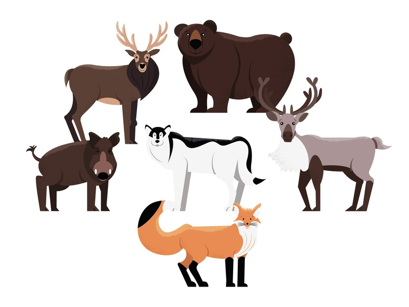 Animals | part 2 deer boar fox wolf reindeer bear illustration animal