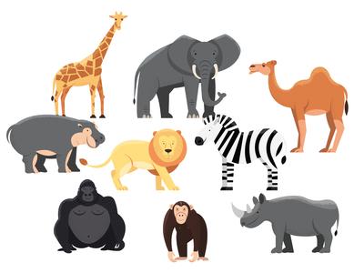Animals | part 3