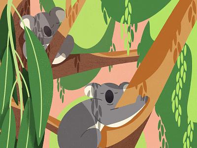 Koala dream dream sleep animals animal children illustration illustraion eucalyptus leaves nature jungle forest koala