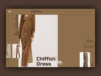 Chiffon Dress ux branding web design
