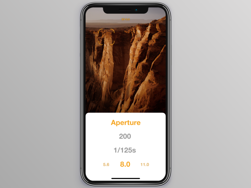 Updated Light meter app design vector design ux iphone x ui mockup iphone app flat app