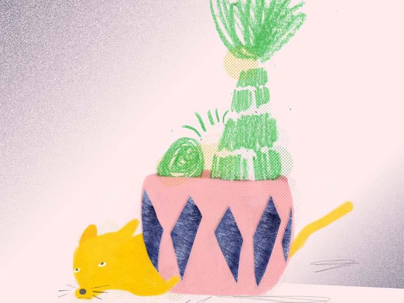 perritos esperando texture plants illustration eyes dog