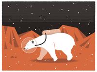 Snowing On Mars