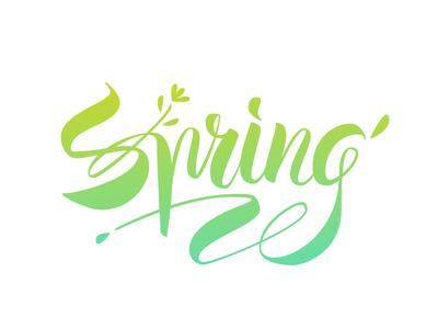 Spring  calligraphy spring type typeface branding logo typography