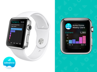 Salesforce Wave (Analytics) Apple Watch V1