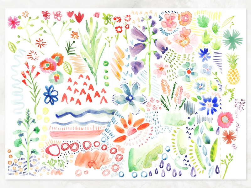 Botanical Watercolor Elements surface pattern stationery clip art patterns painting watercolor floral flowers