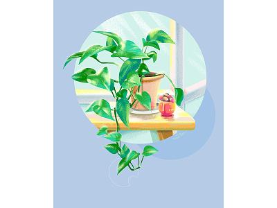 The corner of the day window greens foliage illustration draw