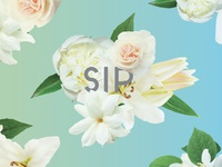 Floral Cup Wrap Design No. 2