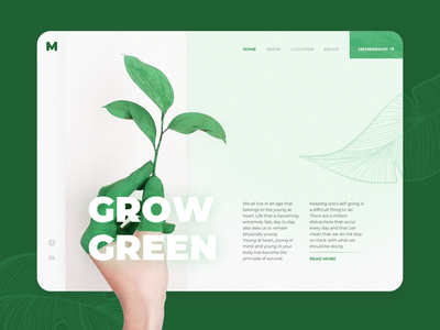 Grow Green - Concept Exploration illustration clean web photo greens leaft gradient dashb oard ui investment plant green