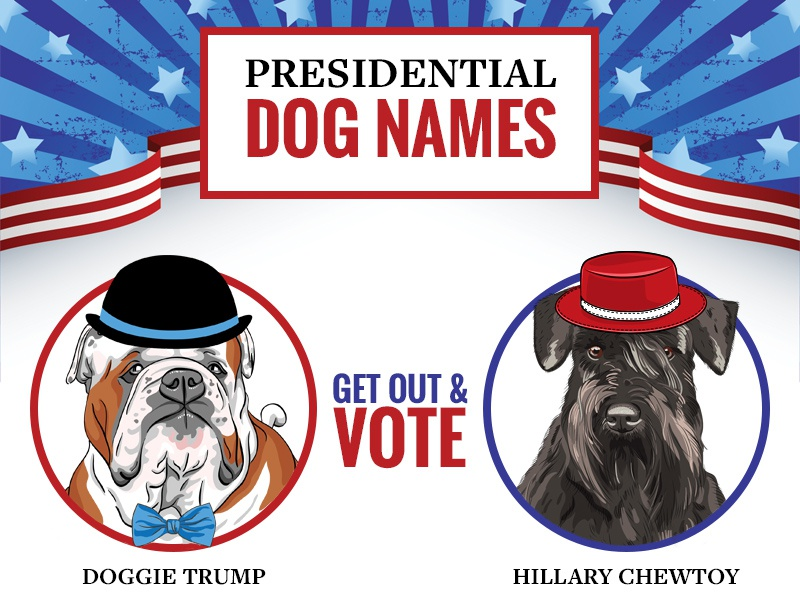 Presidential Dog Names Infographic infographic dog election
