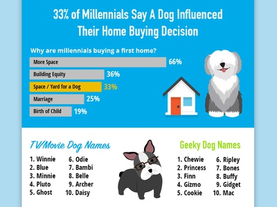Top Dog Names of 2017 Infographic illustration dog puppy dogs infographic