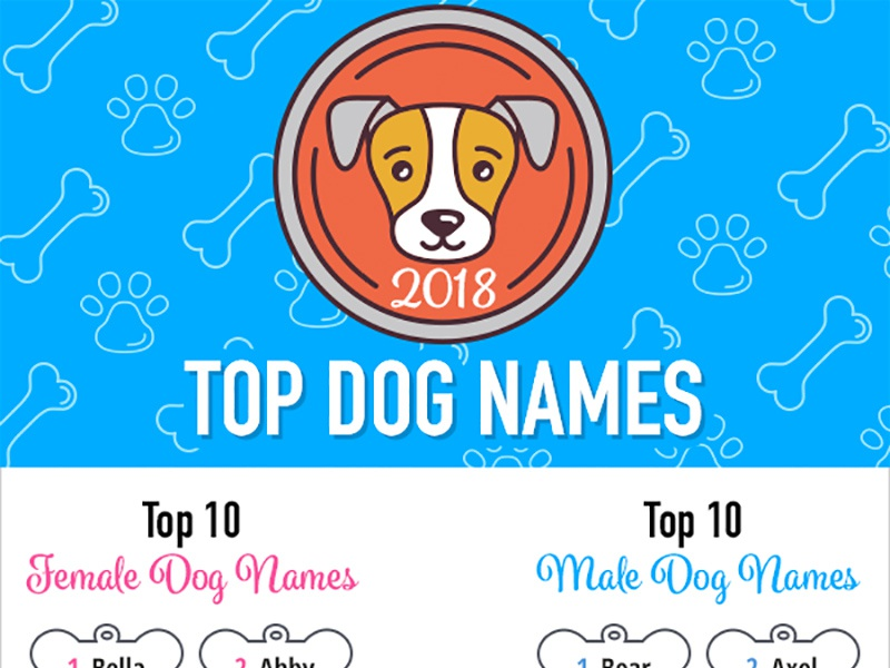 Top dog names 2018 dr