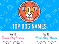 Top Dog Names of 2018 Infographic