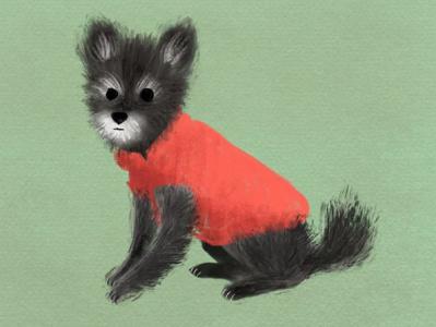 chavo midcentury illustration vintage dog