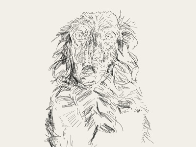wolfhound pencil drawing lines illustration digital illustration draw graphic editorial illustration draws drawing minimal illustrator illustration design design line character wolf dog art adobe illustrator