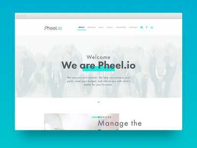 Pheel.io Landing page arabic elephant ui design responsive website landing page pheel.io